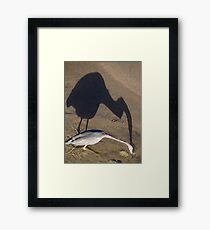 Now I Have Caught You... - Ahorita Yo He Capturarte... Framed Print
