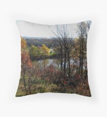 Mankato, MN  Throw Pillow