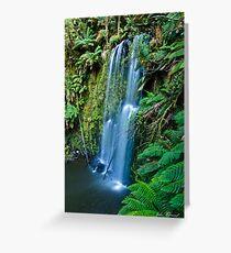 Beauchamp Falls, Ottway National Park , Victoria, Australia Greeting Card