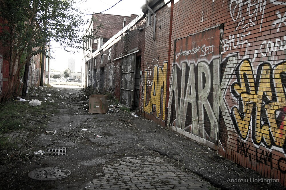 alley (project: desolate) by Andrew Hoisington