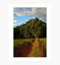 Nicholas Paddocks HDR Art Print