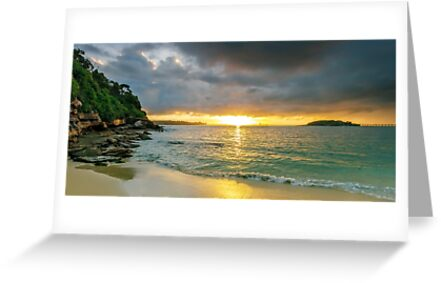 Rays of Congwong Bay by Mark  Lucey