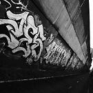 Sydney Graffiti #7 by Nenad  Njegovan