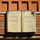 This Bible is set in Stone. by albutross