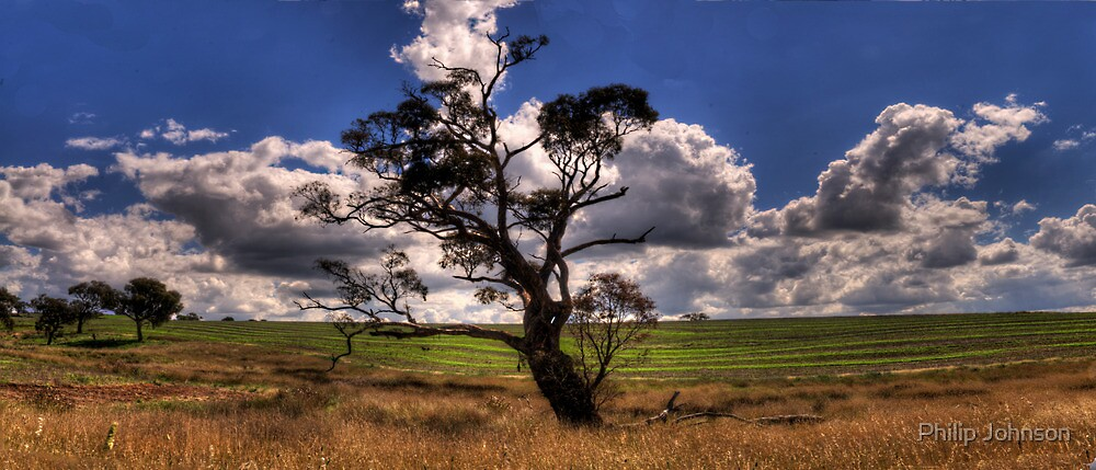 A  Little Bit Country - Harden NSW , Australia - The HDR Experience by Philip Johnson