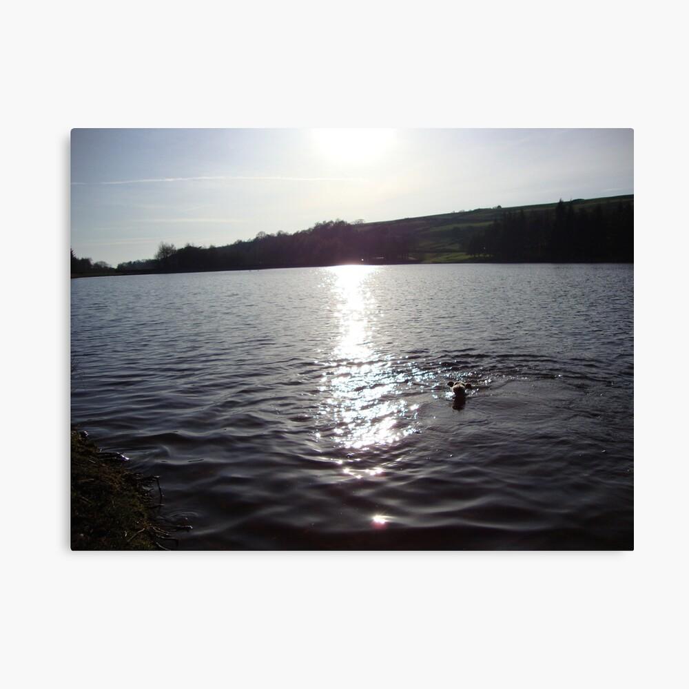 Una tarde de natación Lienzo