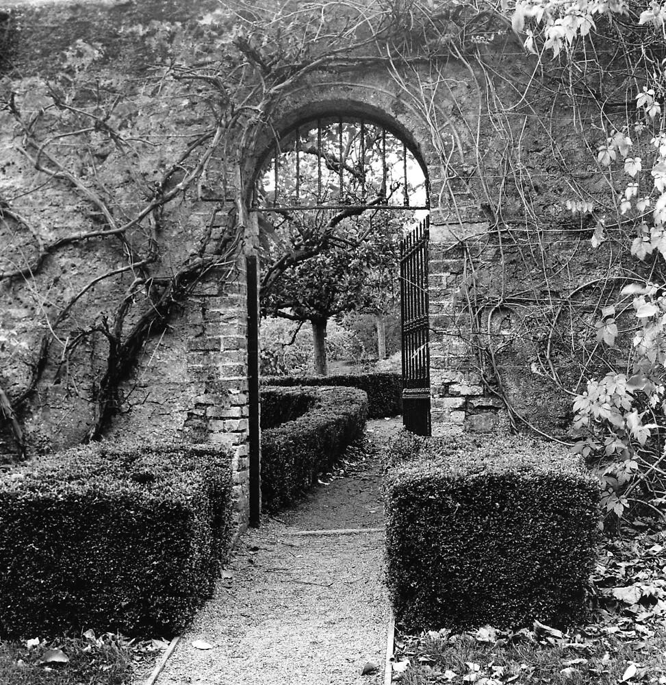 The Walled Garden, Farmleigh, Phoenix Park by Dave  Kennedy