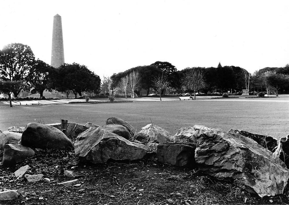 The Wellington Testimonial, Phoenix Park by Dave  Kennedy