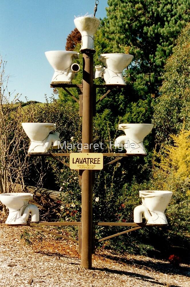 Lavatree, Dorrigo, N.S.W. Australia by Margaret  Hyde