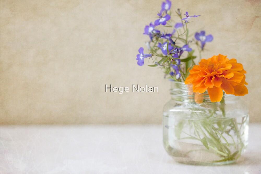 Marigold and Lobelia in a jar vase by Hege Nolan