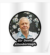 Sir David Attenborough Poster