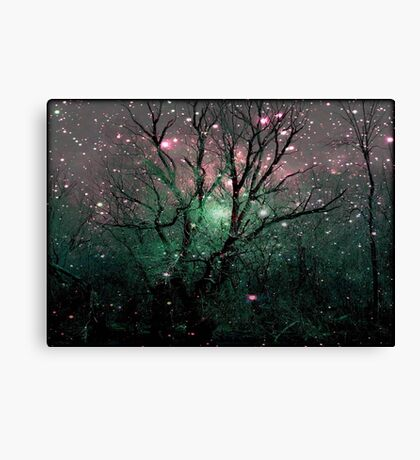 Forest Magic © Canvas Print
