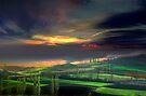 Black Soil Fields by Igor Zenin