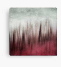 Stripped to the Soul Canvas Print