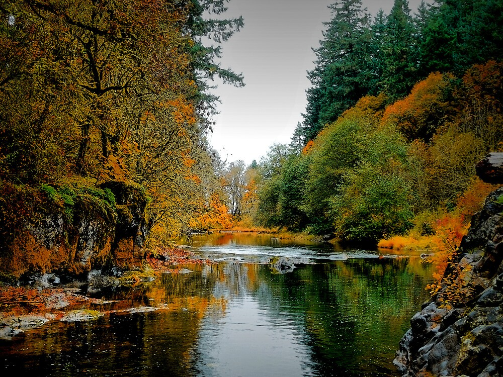 A View Of His Works by Charles & Patricia   Harkins ~ Picture Oregon