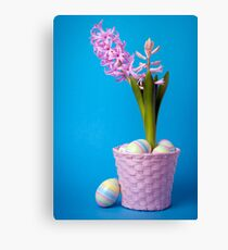 Easter composition with pink hyacinth and painted eggs Canvas Print
