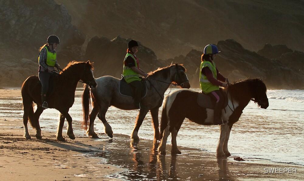 Beach Ponies by SWEEPER