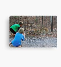 Children taking pictures of two wallabies Metal Print
