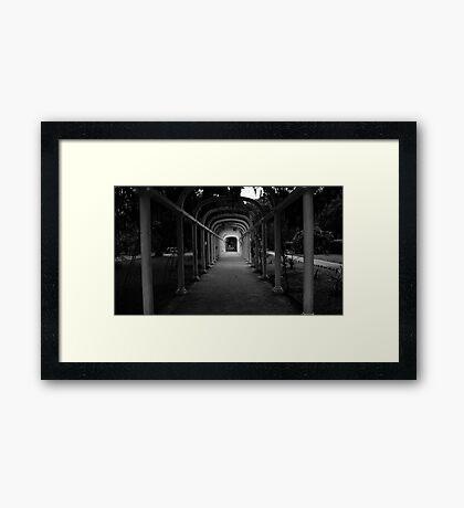 Jardim Botanico Framed Print