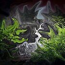 Waterfall by Pat Herlihy