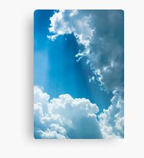 Cloud Survey Metal Print
