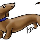 Dachshund by Jennifer Stolzer