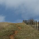 Its a long way to the top by Jackson  McCarthy