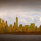 Art of Chicago by Milena Ilieva