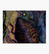 Insect Browned Photographic Print