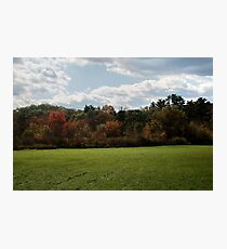 Wall of Color Photographic Print