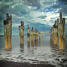 Old Jetty - Flinders Island by Greg Earl