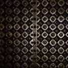 Doors of Jaipur - IV by redscorpion