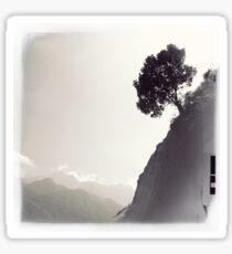 North Vietnam ~ Sapa Tree Sticker
