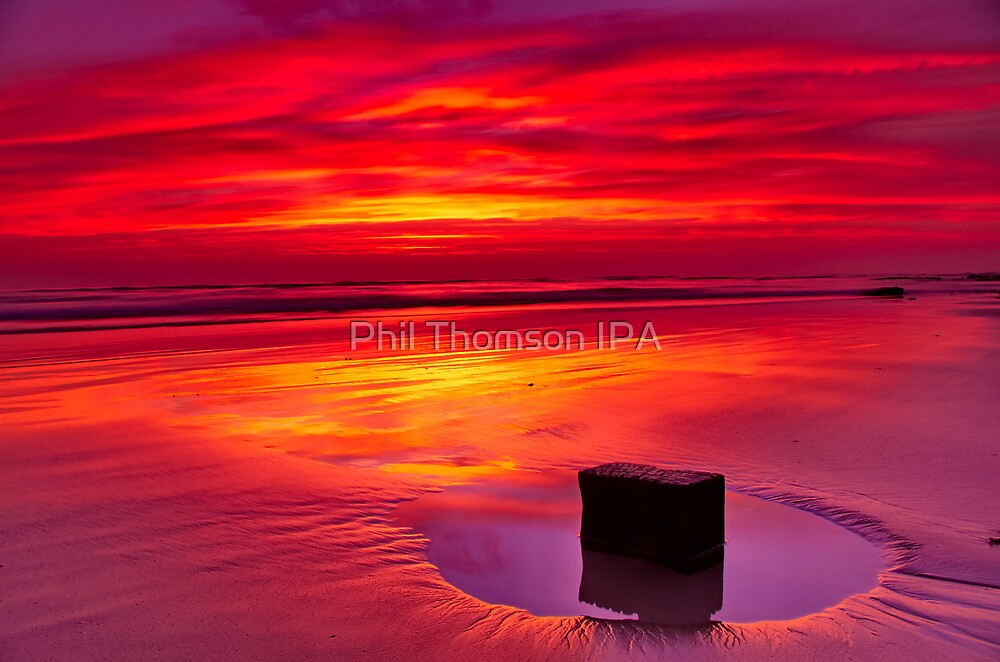 """""""Cosy Solitude"""" by Phil Thomson IPA"""