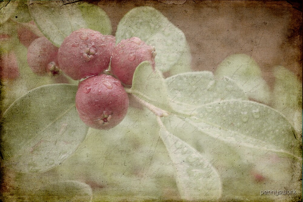 Strawberry Guava with Texture by pennyswork