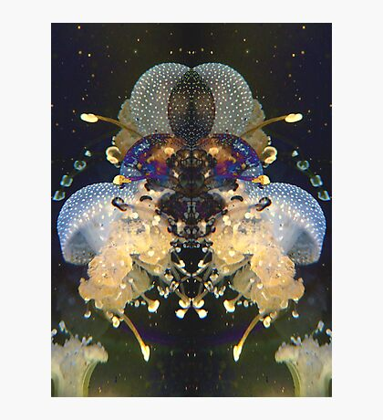 Jellyfish Space Being Photographic Print