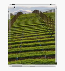 Marlborough Vineyard iPad Case/Skin