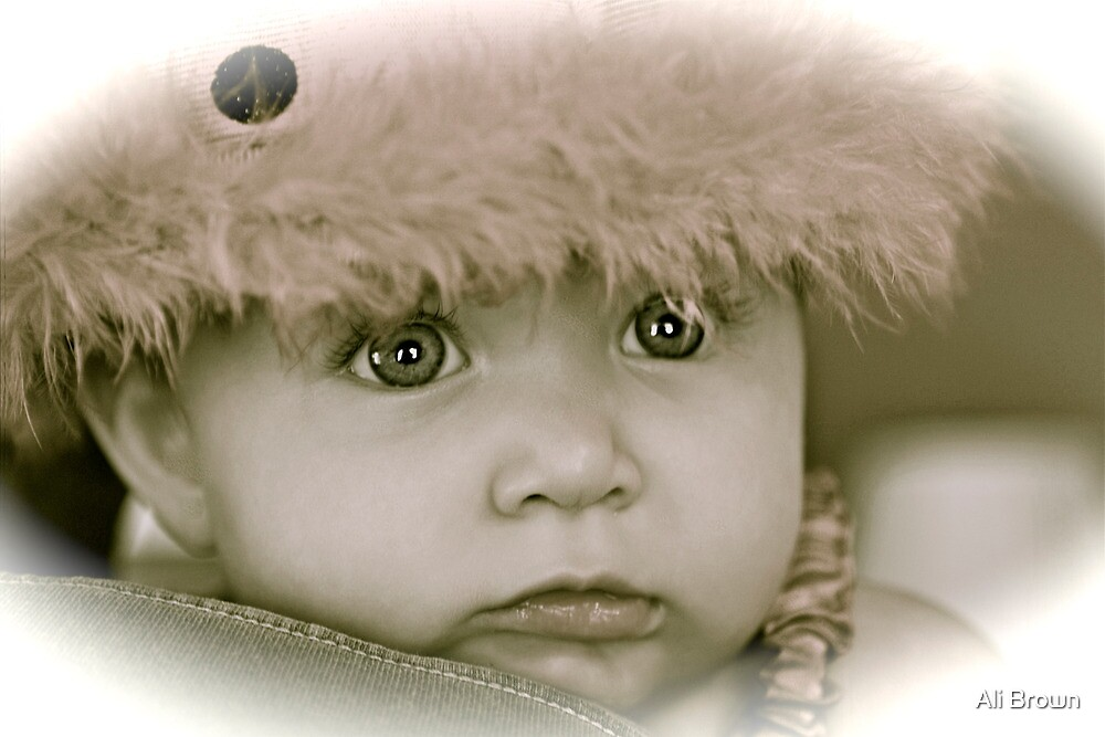 Winter Baby.... by Ali Brown