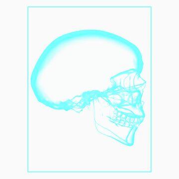 Skull Xray C by noelr7