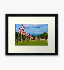 Patriot Row Framed Print
