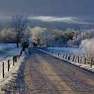 Frosty Sparks Lane (HDR) by Douglas  Stucky