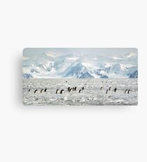 Penguin Highway Metal Print
