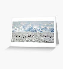 Penguin Highway Greeting Card