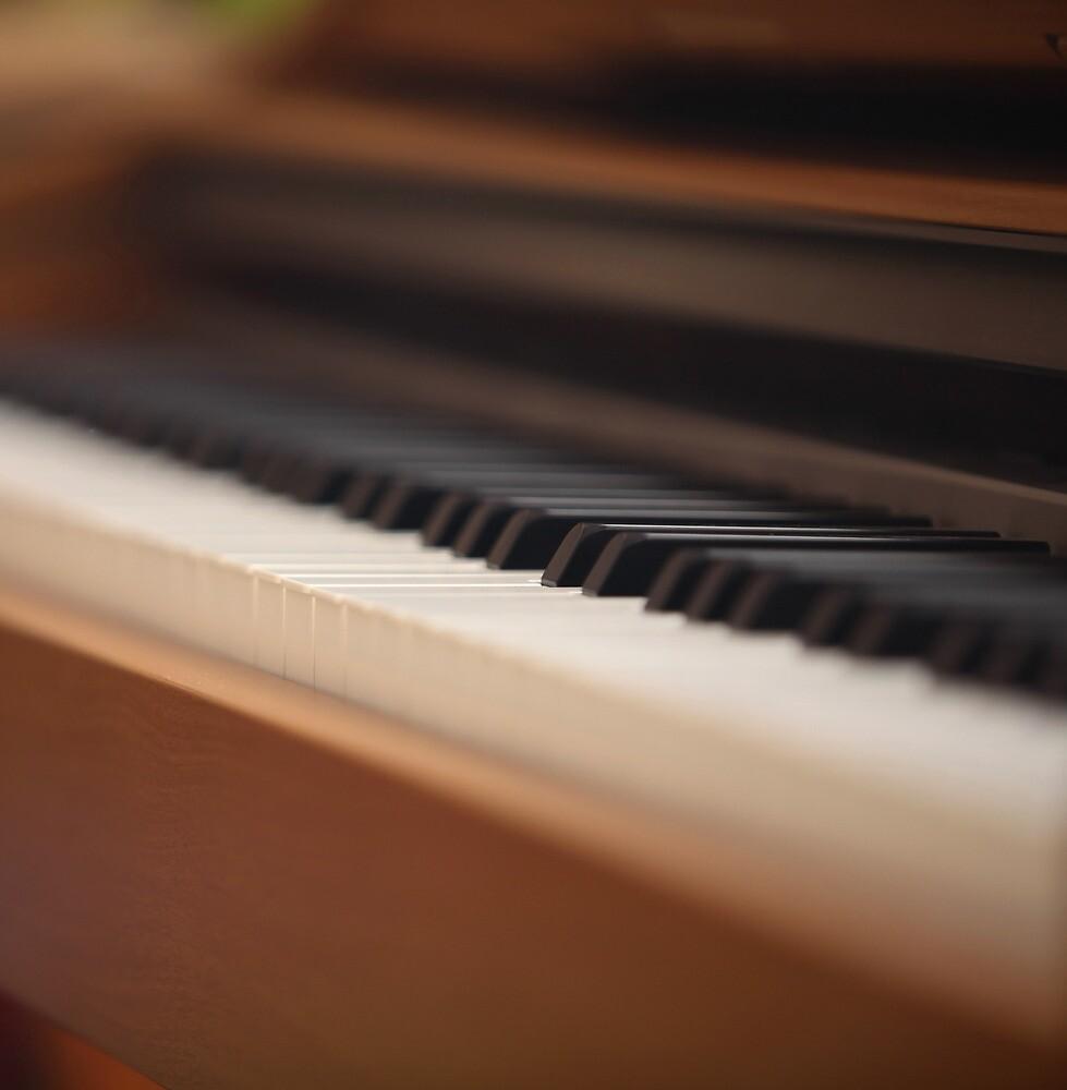 piano keys by mrivserg