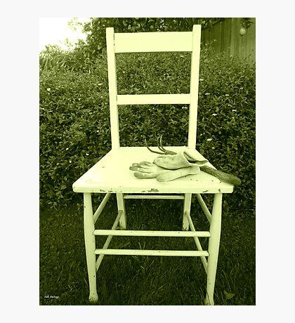 Jardin Chaise Photographic Print