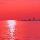 Raspberry Sunset by Jarede Schmetterer