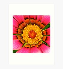 Centre of Attention! Art Print