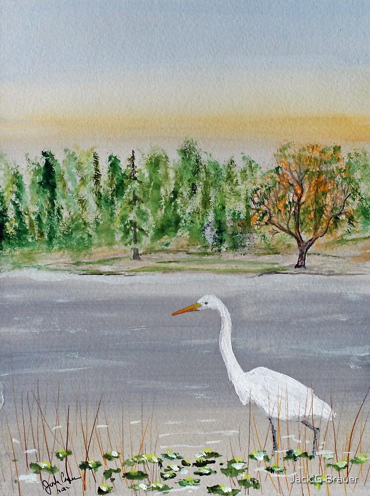 Egret Breakfast Prowl by Jack G Brauer