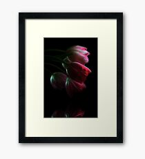 Tulips Reflected Framed Print