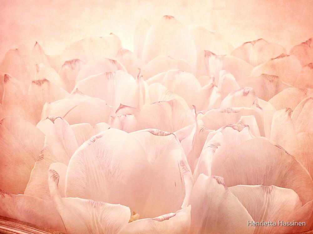 Tulips by Henrietta Hassinen